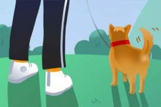 有没有和陀螺世界类似的软件?玩游戏升级即可获得分红!旅行世界app上线啦!100%获得分红狗!